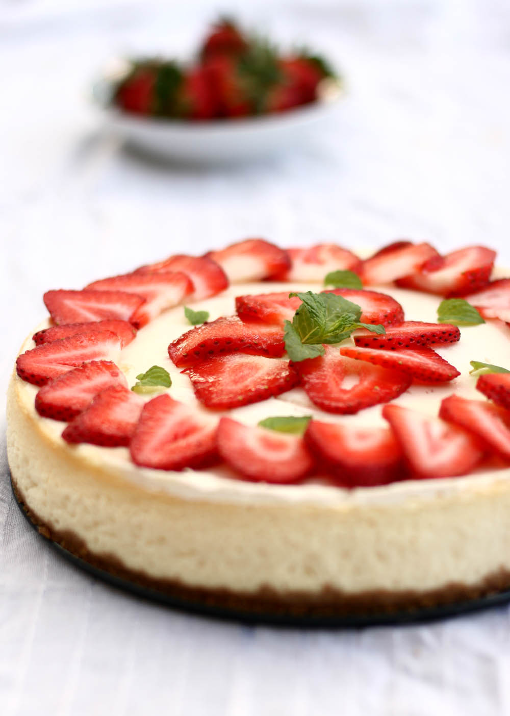 Plain Cheesecake Recipe No Crust